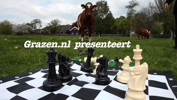 Grazen TV - Uitzendingen over cultuur die er toe doet in Rotterdam