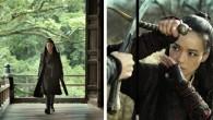 De film 'The Assassin' is een zeldzame vogel in het oeuvre van Hou Hsiao Hsien. De filmmaker die samen met Edward Yang de Taiwanese New...
